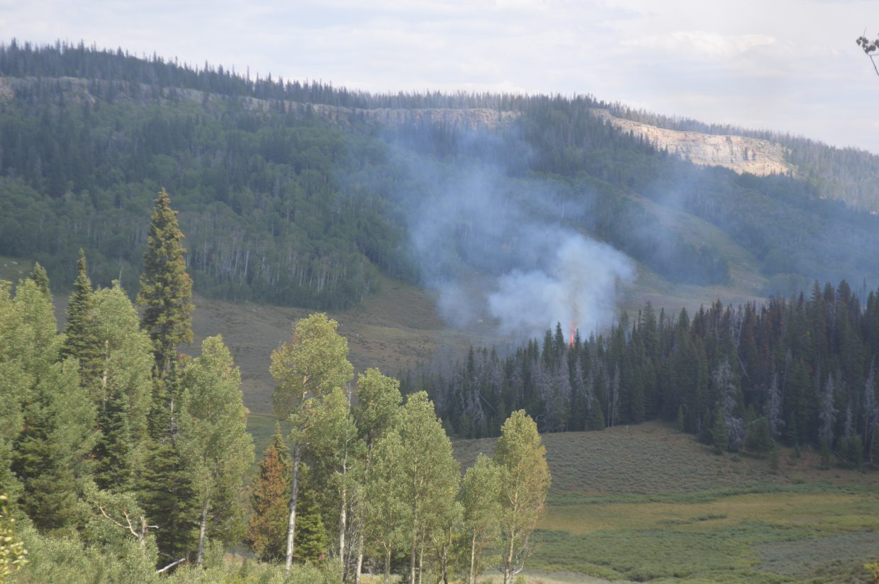 The Silver Creek Fire is made up of multiple smaller, spot fires across 2,000 acres. Here is an incident of single-tree torching.