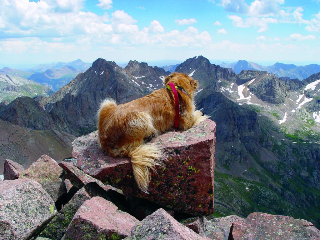 Sawyer rests on the summit block of Mount Eolus, with Sunlight Peak and Windom Peak in the distance. The drop-off on the other side of the block was nearly vertical.